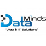 Data Minds