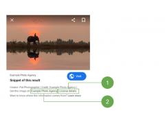 Lizenzierungs-Test bei Google Images