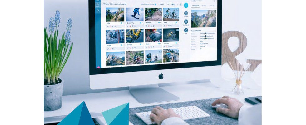 Whitepaper: So findest du den passenden Digital Asset Management Anbieter