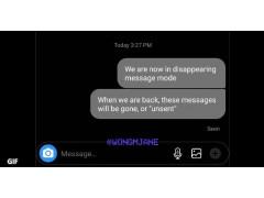 Ein Chat im Dark Mode, an dem Wong demonstriert, dass die Nachrichten verschwinden