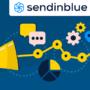 Newsletter2Go wird Sendinblue – eine Marke für die Marktführerschaft in Europa