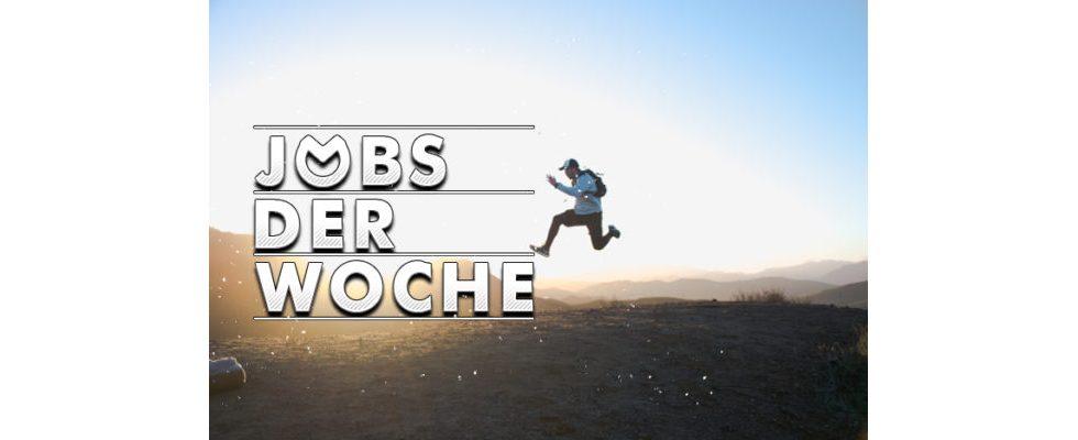 Schluss mit der langen Jobsuche – mit unseren Jobs der Woche