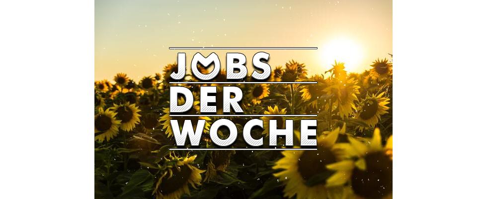 Sommer, Sonne und  Sonnenschein – mit unseren Job der Woche strahlt dein Tag