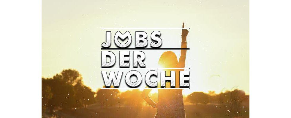 Jobs der Woche: Endlich wieder mit einem Lächeln aufwachen
