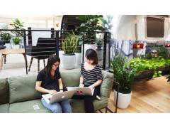 Zwei Frauen mit Laptop auf einem Sofa