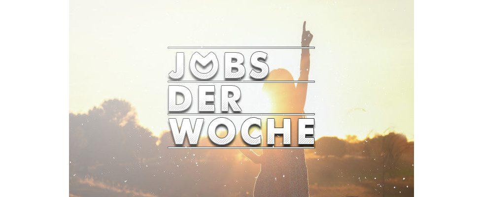 Sommer, Sonne, neuer Job? Finde deinen Traumberuf mit unseren Jobs der Woche