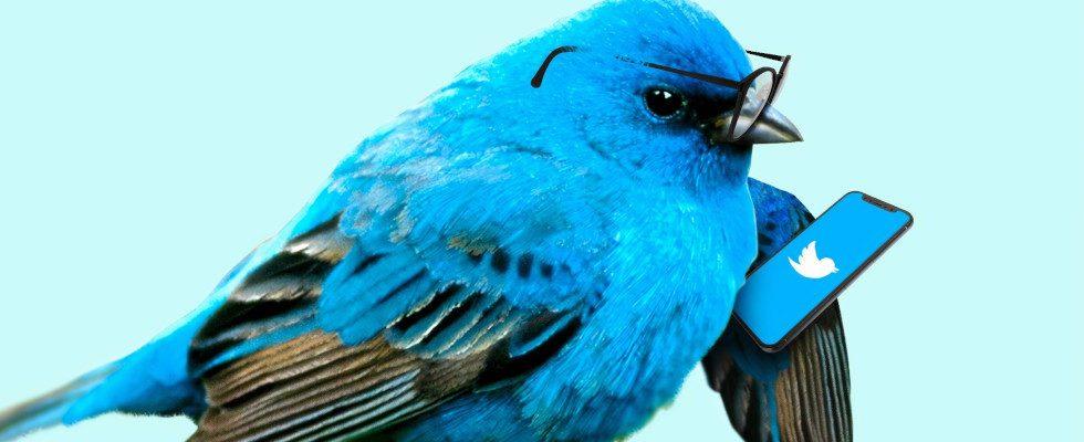 Twitter ändert API zugunsten von Third-Party-Entwicklern