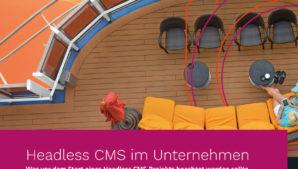 Headless CMS im Unternehmen