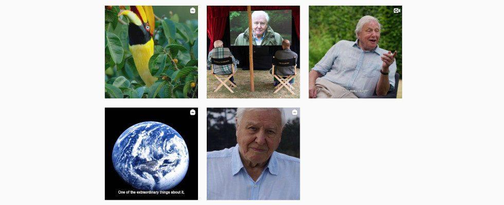 In Rekordzeit zu einer Million Instagram Followern: Sir David Attenborough toppt Jennifer Anistons Bestwert