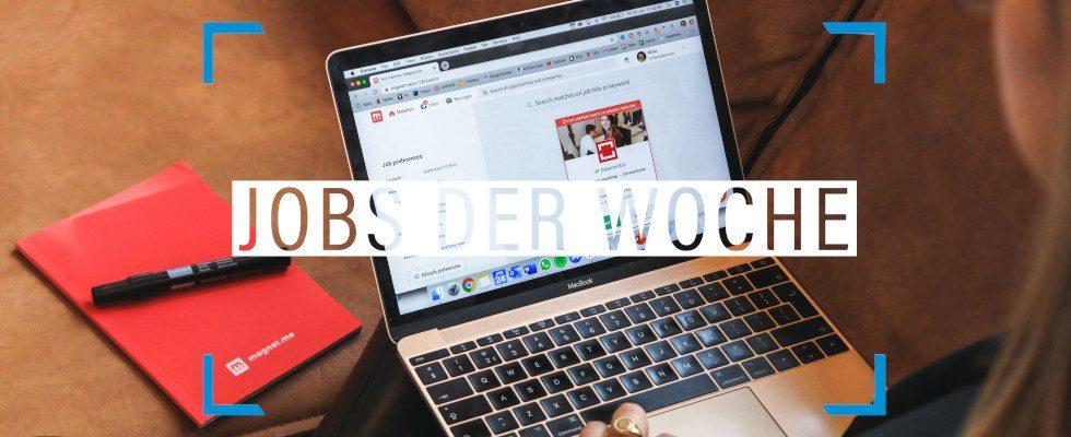 Mit ein paar Klicks deinen Traumjob finden: Unsere Jobs der Woche