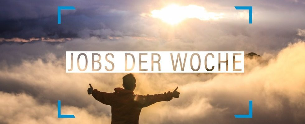 Do More of What Makes You Happy – mit unseren Jobs der Woche