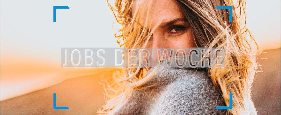 Winterblues adé! Bleibe motiviert mit unseren Jobs der Woche
