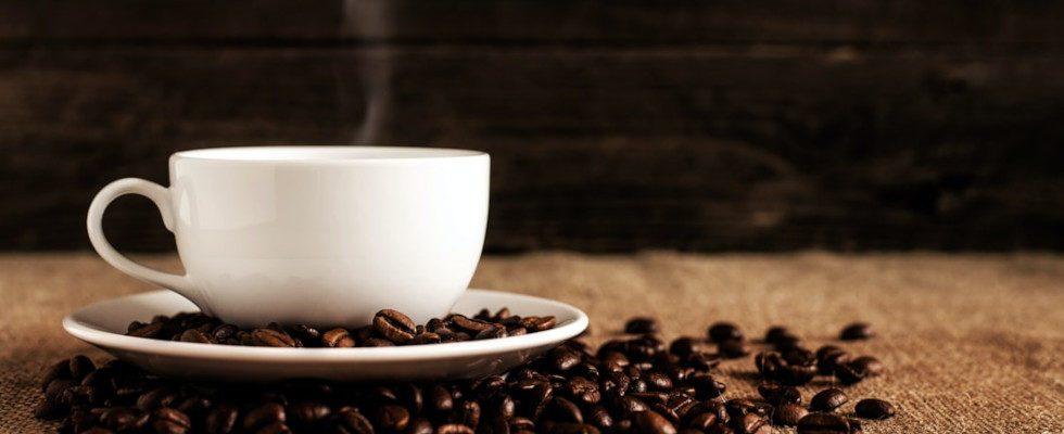 Coffee Content: Wie performen altbekannte Kaffeemarken und junge Brands auf Instagram?