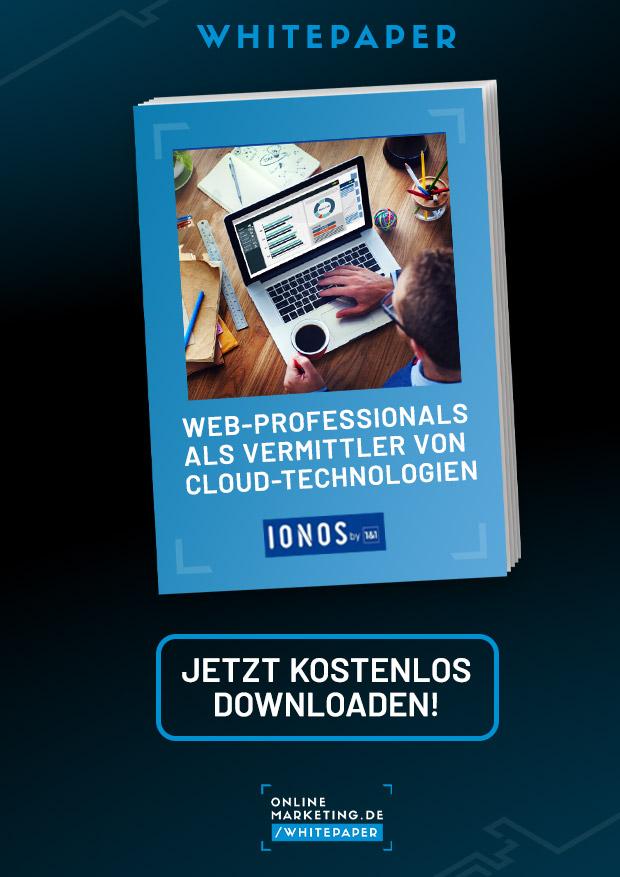 Web-Professionals als Vermittler von Cloud-Technologien