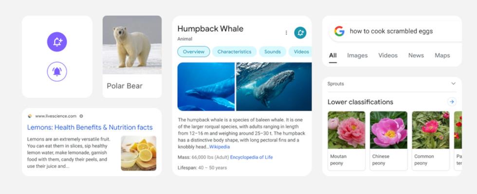 Googles Redesign für die mobile Suche wird ausgerollt
