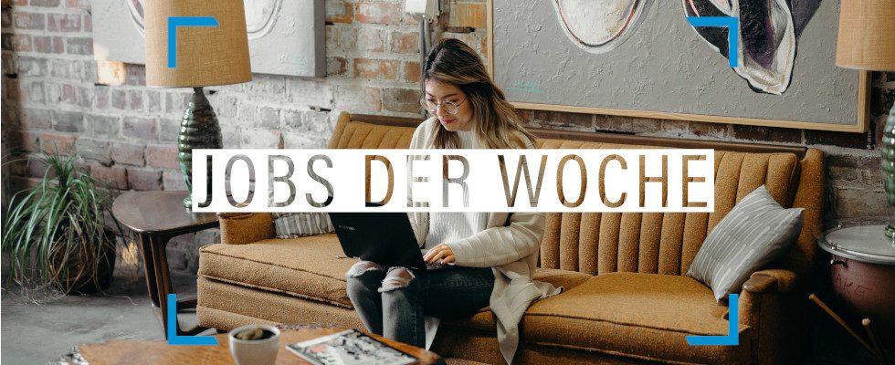 Wenn nicht jetzt, wann dann? Finde deinen Traumjob mit unseren Jobs der Woche