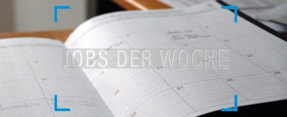 Perfekter Februar, perfekte Job-Aussichten mit unseren Jobs der Woche