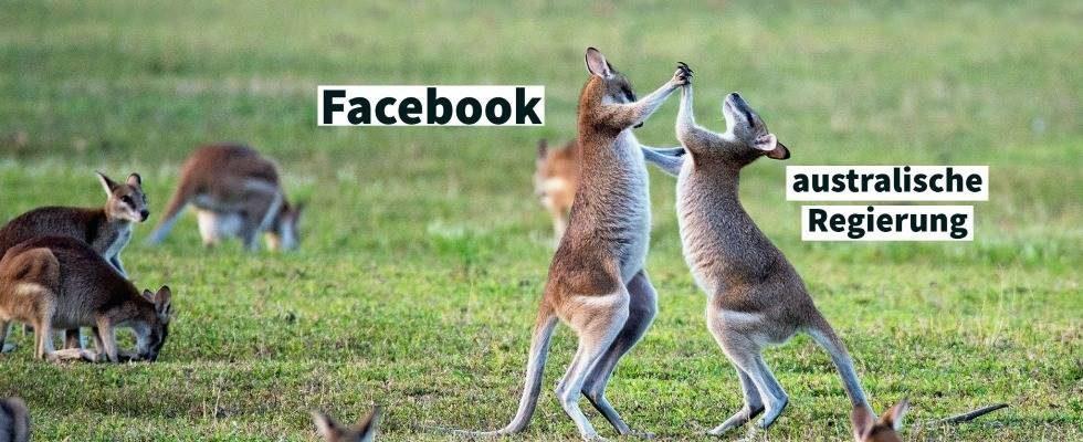 Facebook streicht journalistische Medieninhalte in Australien