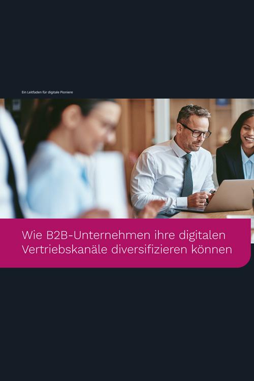 Wie B2B-Unternehmen ihre digitalen Vertriebskanäle diversifizieren können