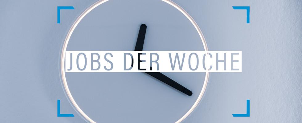 Jobs der Woche: Jetzt ist die Zeit des Bewerbens gekommen