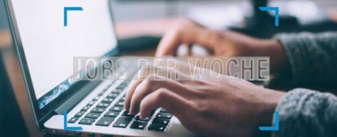 Im Handumdrehen zum neuen Job – mit unseren Jobs der Woche