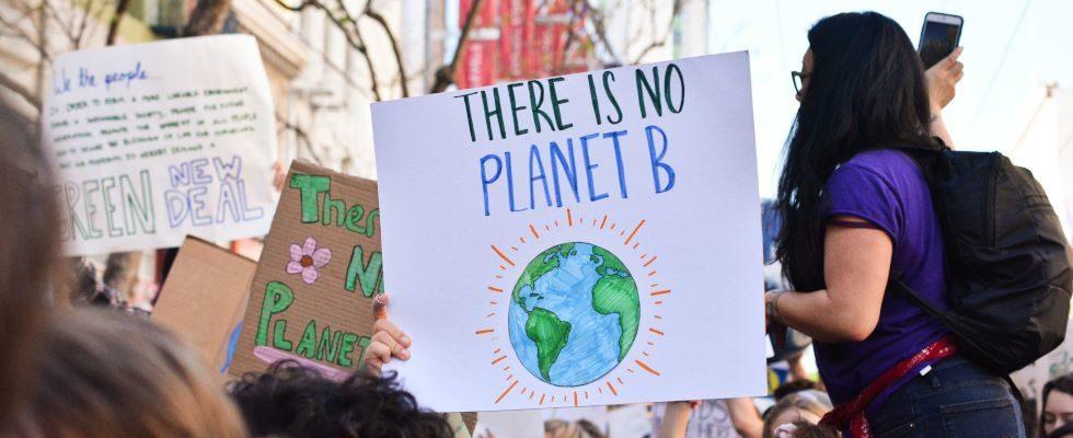 Nachhaltigkeit im Büro? In 5 Schritten Klimaschutz und Umwelt unterstützen