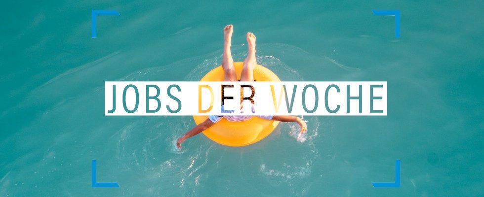 Sommer, Sonne, neuer Job: Mit unseren Jobs der Woche