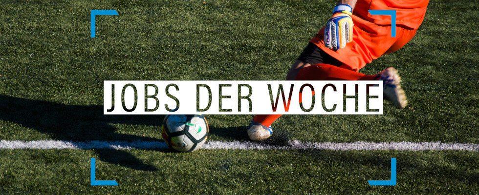 Rote Karte für deine Karriereflaute: Unsere Jobs der Woche