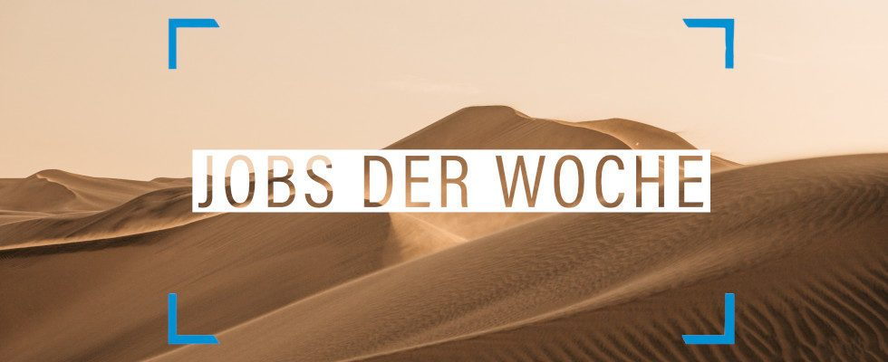 Jobs der Woche: Beende jetzt deine Suche