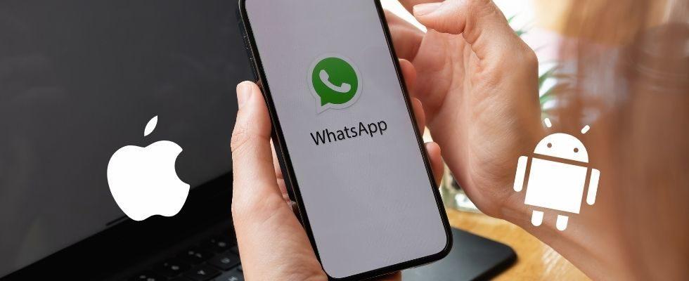 WhatsApp erlaubt jetzt Transfer von Chatverläufen zwischen Android- und iOS-Geräten