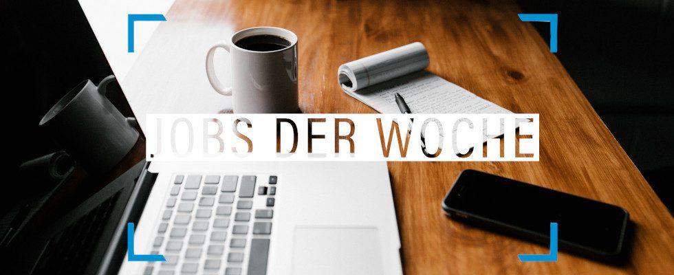 Dein Bewerbungshelferlein: Von der Jobsuche bis zum Bewerbungsgespräch