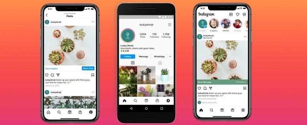 Verschmelzung der Apps? Mit einem Klick von Instagram zu WhatsApp