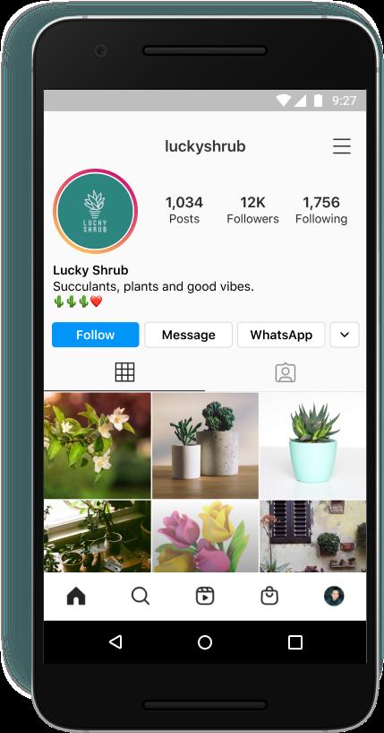 Der WhatsApp Button in einem Business-Profil, © Instagram