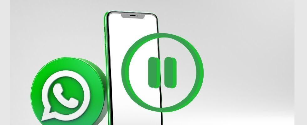 WhatsApp: Dieses neue Feature sorgt für weniger Gelaber